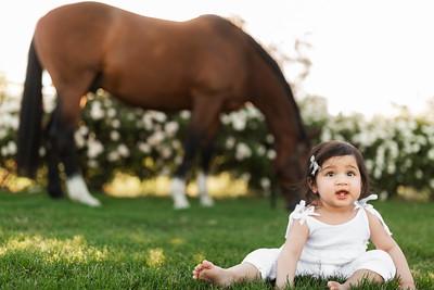 Maharaj Family Session Horse Ranch A027