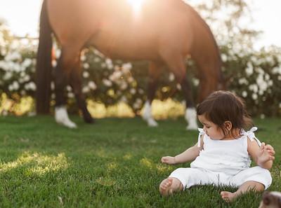 Maharaj Family Session Horse Ranch A021