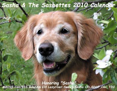 Sashette Calendars