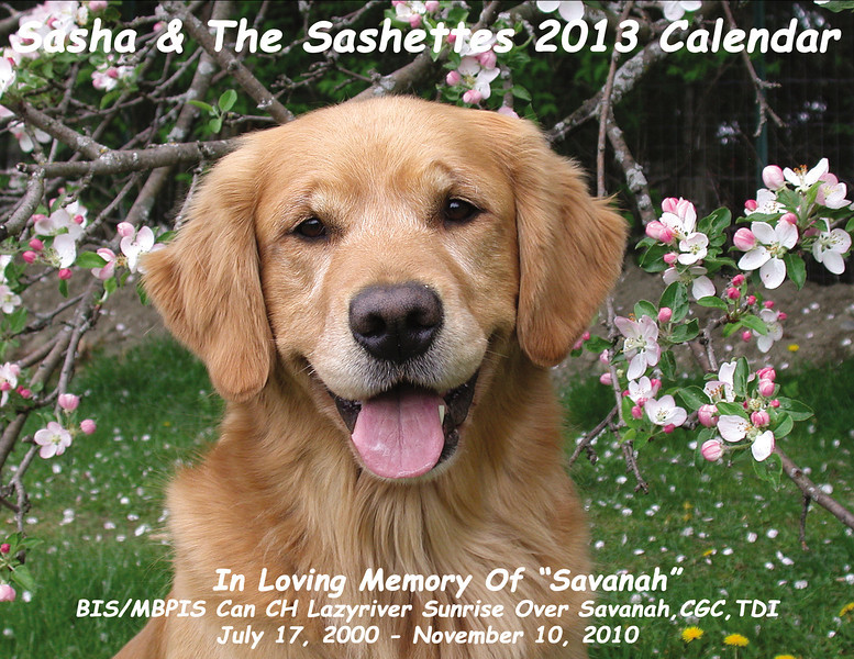 2013 Calendar cover - Savanah