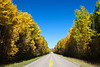 Highway 263 with fall foliage color in Prince Albert National Park, Saskatchewan, Canada.