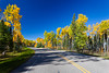 Highway 264 with fall foliage color in Prince Albert National Park, Saskatchewan, Canada.