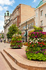 Flowers decorating the downtown are of Regina, Saskatchewan, Canada.