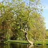 Park Rusthoff, foto 2005<br />  <br /> ref.nr: S1238
