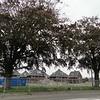 Beukenhof, foto 2012<br /> <br /> ref.nr: S0201