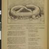 Novogodnii Orakul, vol. 77, no. 8, 1907