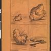 Duel', vyp. 94, no. 25, 1905. Iumoristicheskii al'manakh.