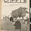 SJP-SPRUT-1906-V00-N11
