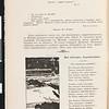 Plamia, no. 4, January 1906