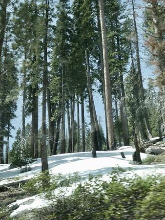 ALTITUDE GAIN, PLENTY OF SNOW