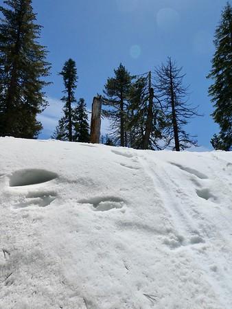 BEAUTIFUL WALLS  OF SNOW