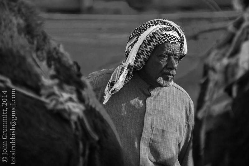 Camel herder