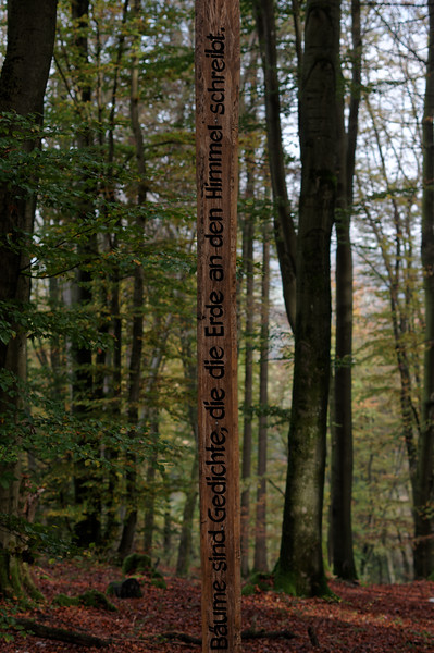 """Detail of """"Die Baumschule"""" wayside art"""
