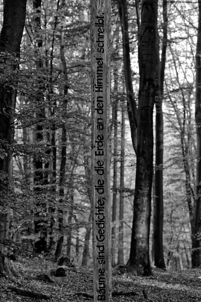 """Detail of """"Die Baumschule"""" wayside art (b/w)"""