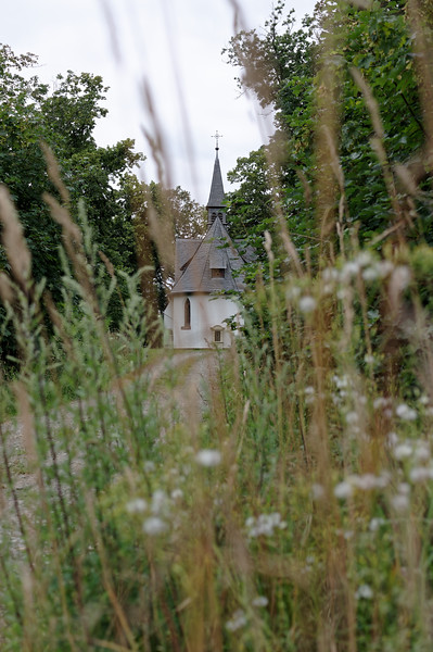 Rear view of Kahlenberg Chapel through wayside growth