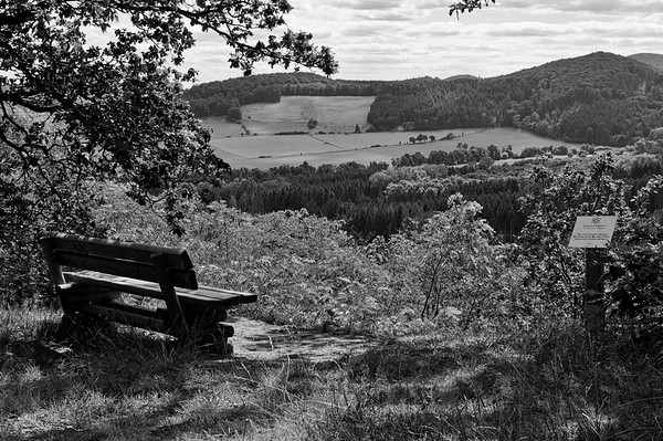 Overlook from Kahlenberg on a July afternoon (b/w)
