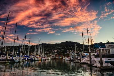 Suasalito Boat Harbour 5