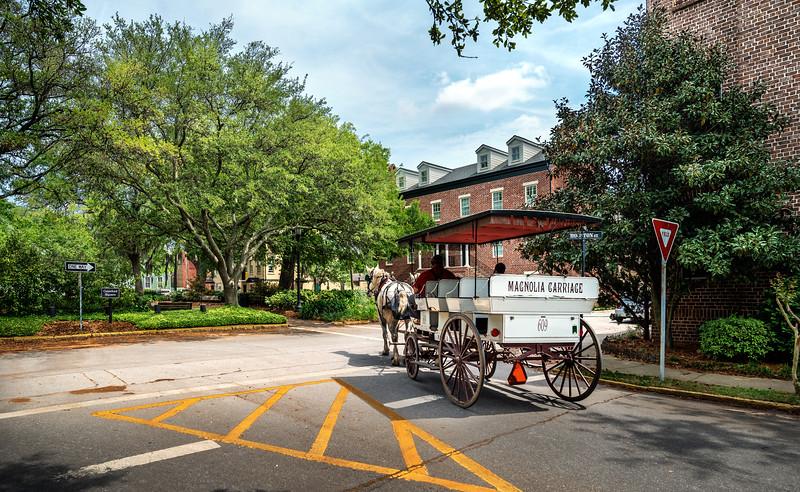 Savannah Carriage Ride