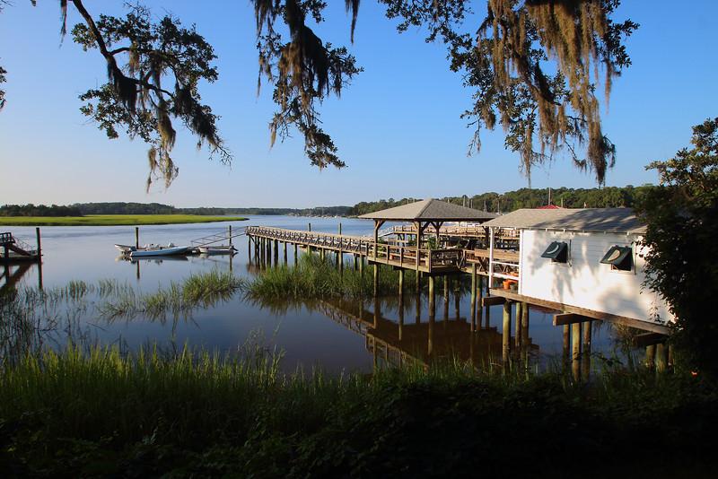 The Savannah marsh framed by spanish moss.