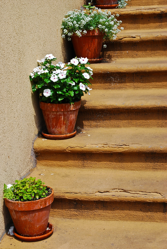 Five stairs, three pots