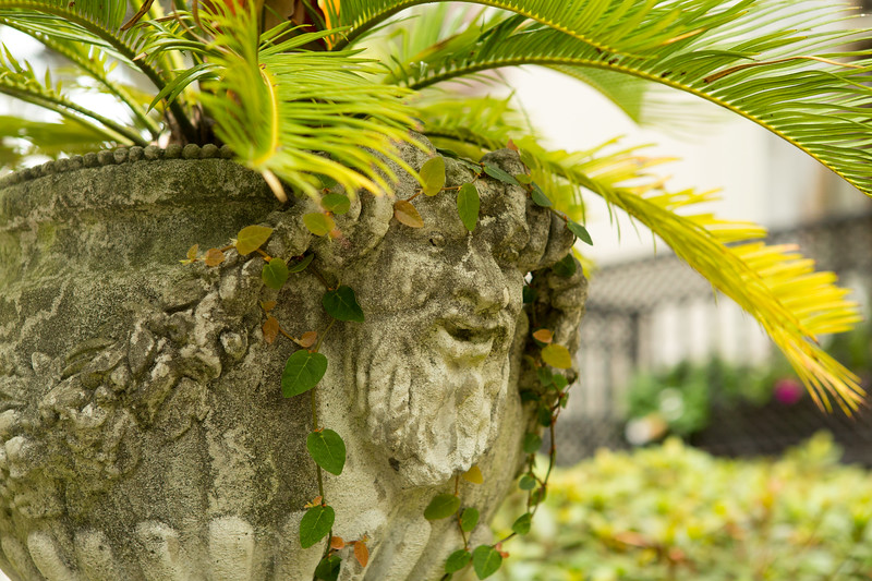 Plant urn in Savannah