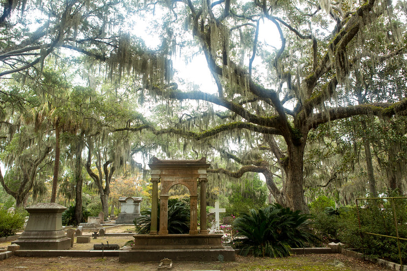 Moss covered trees and graves Savannah Georgia at Bonaventure Cemetery