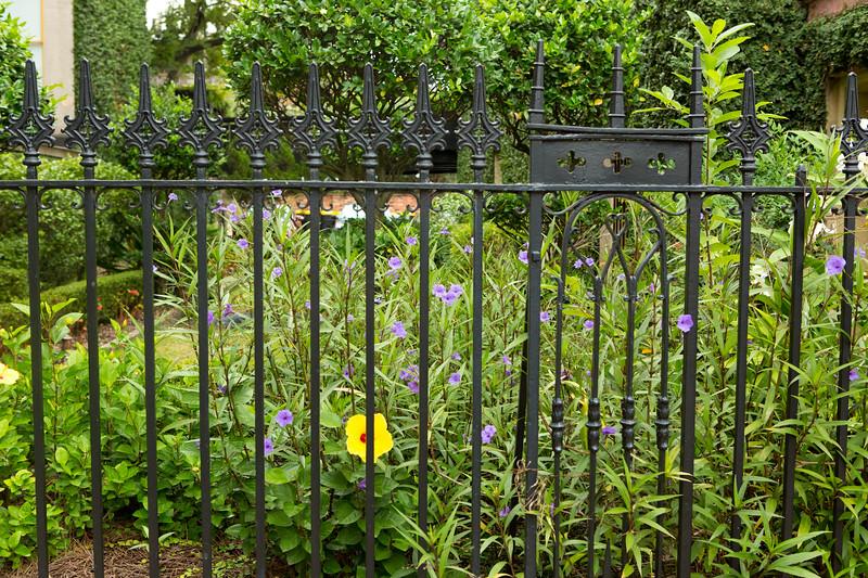 Old fence Savannah Georgia