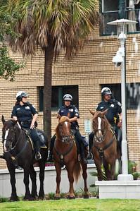 horse-cops