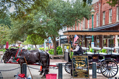 city-market-horse-carriage