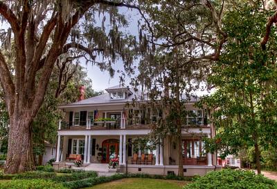 mossy-tree-house-2