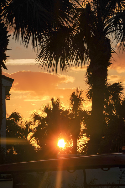 Savannah-Tybee Island November 2016 Bkearns
