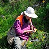 2018 Bioblitz <br /> Save Mount Diablo <br /> April 13-14, 2018 <br /> John Ginochio's Arroyo Del Cerro <br /> 1575 North Gate Rd. <br /> Walnut Creek, CA 94598