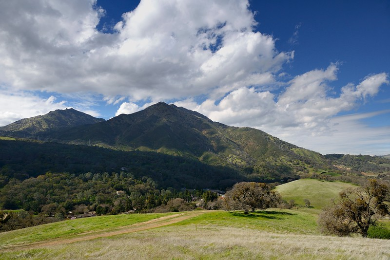 View of North Peak and Mt. Diablo from <br /> Anderson Ranch. <br /> Save Mount Diablo <br /> March 12, 2018