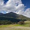 View of North Peak and Mt. Diablo from <br /> Anderson Ranch. <br /> Save Mount Diablo <br /> March 12, 2018
