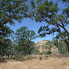 Big Bend <br /> Save Mount Diablo <br /> May 18, 2016