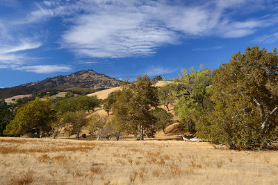 Curry Canyon