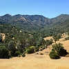Donner Canyon <br /> Mount Diablo State Park <br /> July 18, 2016