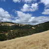 Hanson Hills <br /> Save Mount Diablo <br /> May 20, 2016