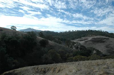 Irish Canyon Oak and Buckeye Restoration Survey 111810