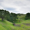 Lime Ridge Open Space. <br /> Contra Costa County, CA  <br /> March 15, 2015