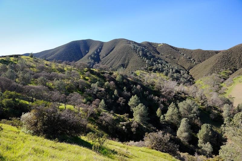 Mitchell Rock Trail <br /> Mt. Diablo State Park <br /> Feb. 7, 2016