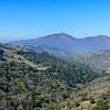 View of Mt Diablo from Parire Falcon Trail, <br /> Morgan Territory Regional Reserve. <br /> 29 Jan 2015
