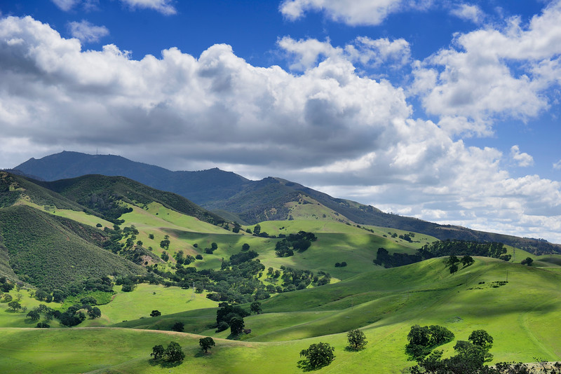 Mount Diablo from Lime Ridge Open Space. <br /> Overlooking Mangini Ranch and Walker Canyon. <br /> Contra Costa County, CA <br /> April 8, 2015