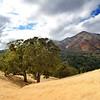 Mount Diablo from Leon Dr. <br /> Nov. 4, 2017