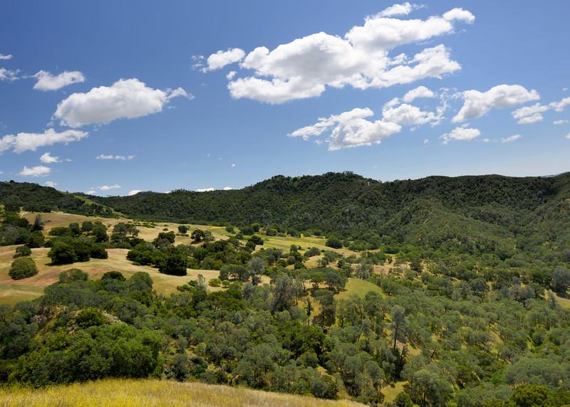 Mt. Diablo State Park, CA <br /> Jun. 5, 2014