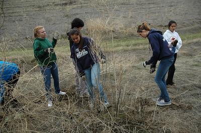 Northgate and De La Salle Students Prep Mangini Restoration