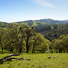 Oak Hill <br /> Looking east south/east (120 degrees) <br /> Save Mount Diablo <br /> Feb. 27, 2016