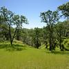 Oak Hill <br /> Save Mount Diablo <br /> April 16, 2016