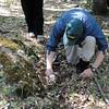 Save Mount Diablo - 2015 Bioblitz<br /> Morgan Fire Footprint <br /> April 23, 2015<br /> Kip Will (Associate Professor, Director, Essig Museum of Entomology at UC Berkeley).