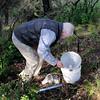 Save Mount Diablo - 2015 Bioblitz<br /> Morgan Fire Footprint <br /> Frog Pond Road. <br /> Jerry A. Powell, Director Emeritus, <br /> Essig Museum of Entomology, UC Berkeley.